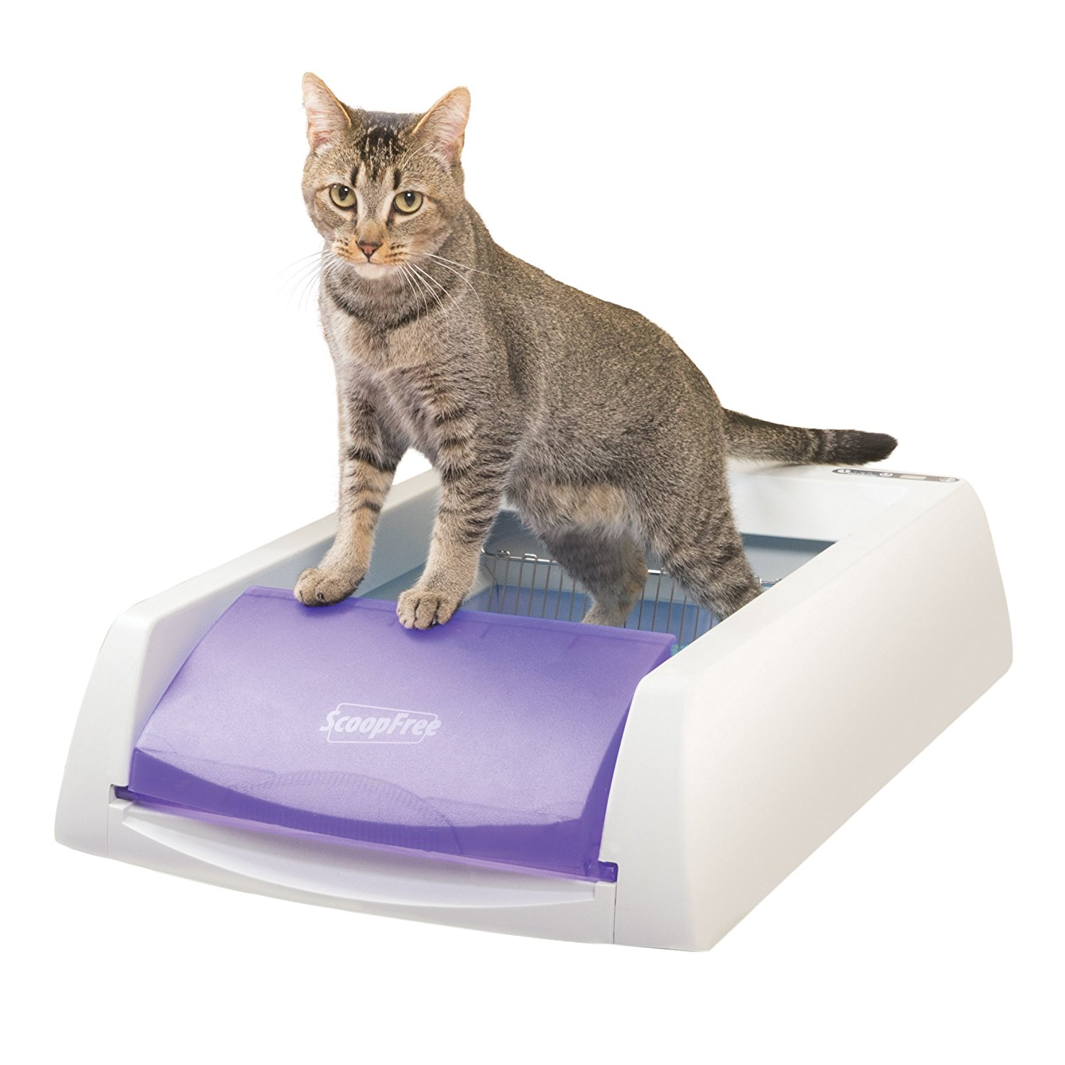 Gifts for cat lovers - self-cleaning litter box