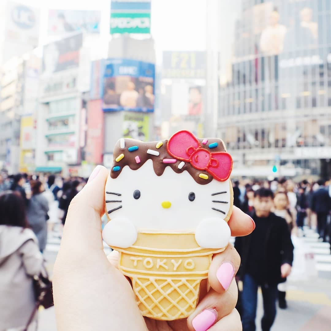 Cat Lover Aesthetic - Hello Kitty cookie