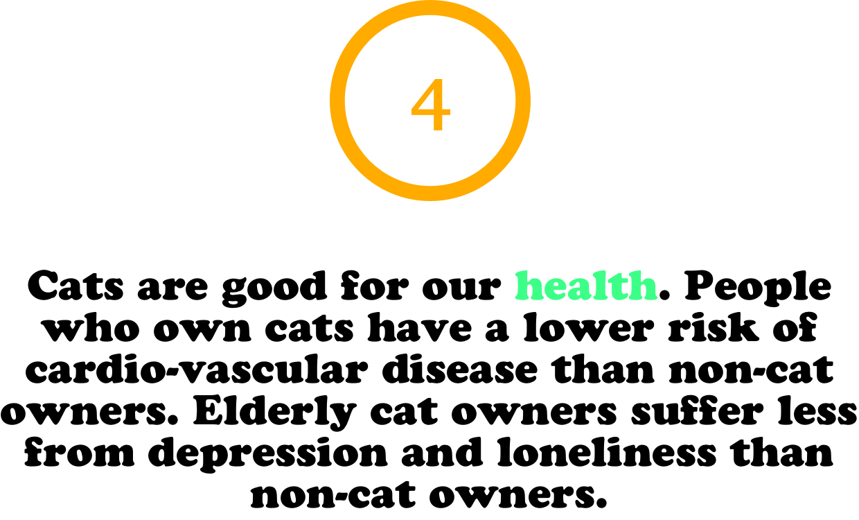 Fun facts about cats - Cats are good for our health. People who own cats have a lower risk of cardio-vascular disease than non-cat owners. Elderly cat owners suffer less from depression and loneliness than non-cat owners