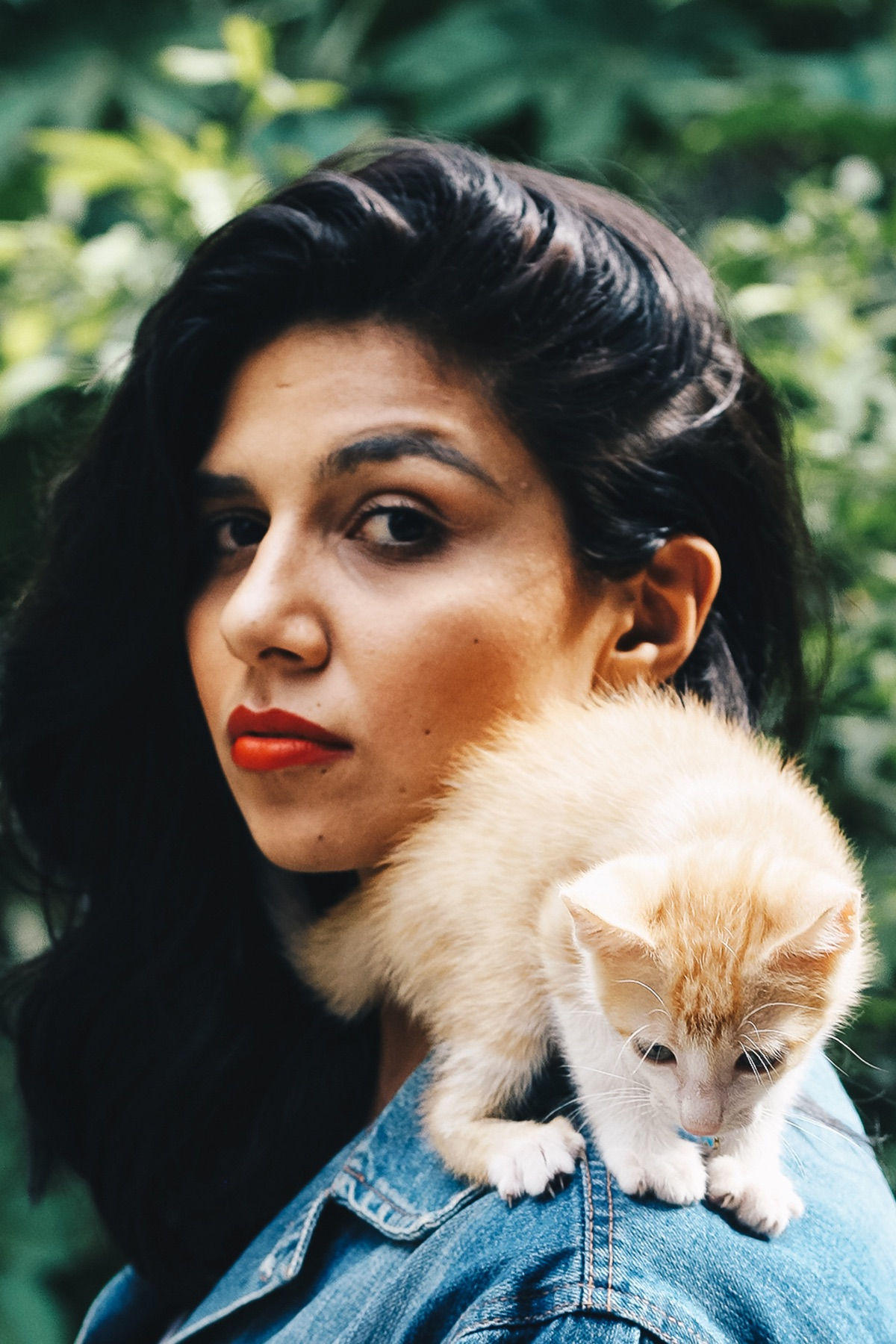 Young beautiful woman with kitten on her shoulder