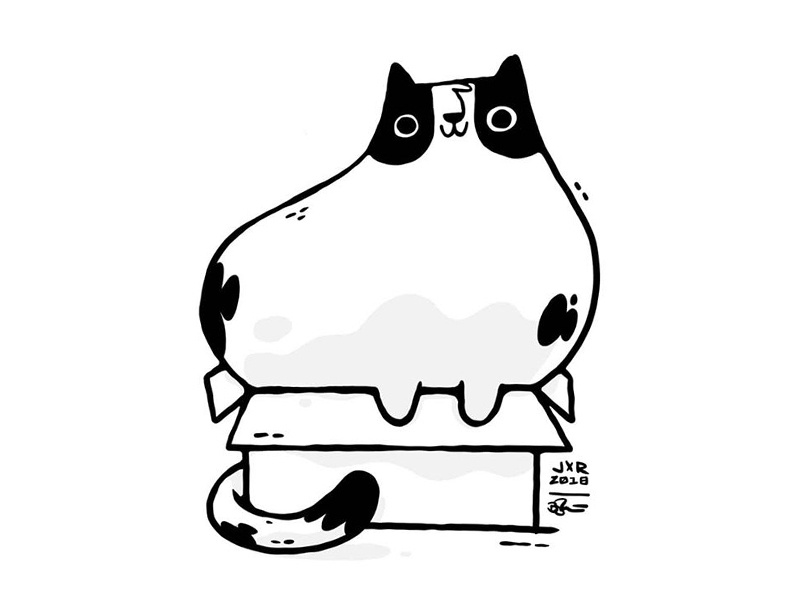 Cat Illustrations - Cat In Box. Art by Jetpacks and Rollerskates