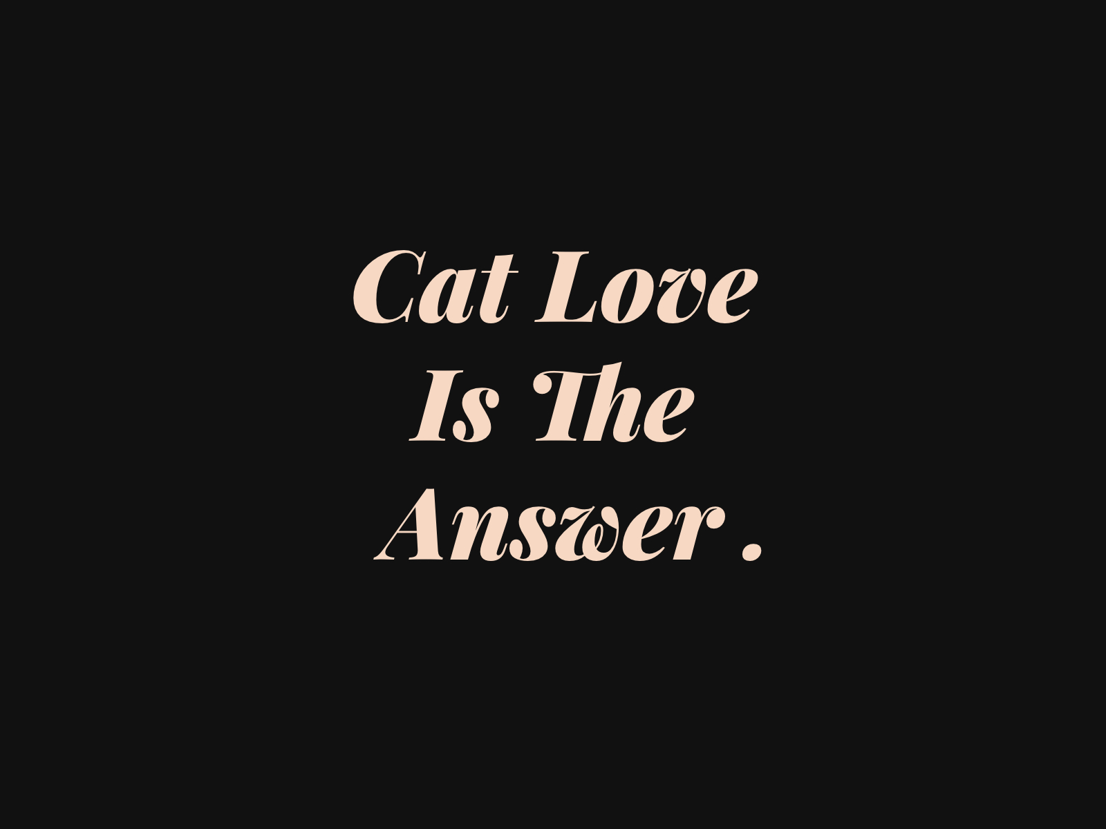 Cat Love Is The Answer. Funny quote T-shirt