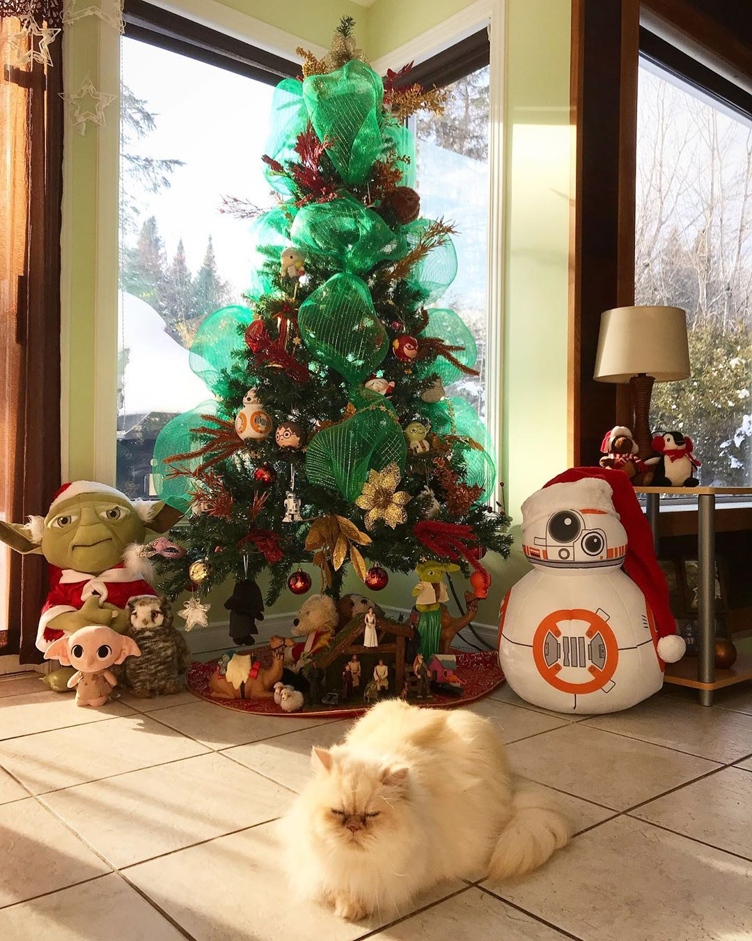 Beautiful cozy fluffy cat and Star Wars inspired Christmas tree and holiday decor
