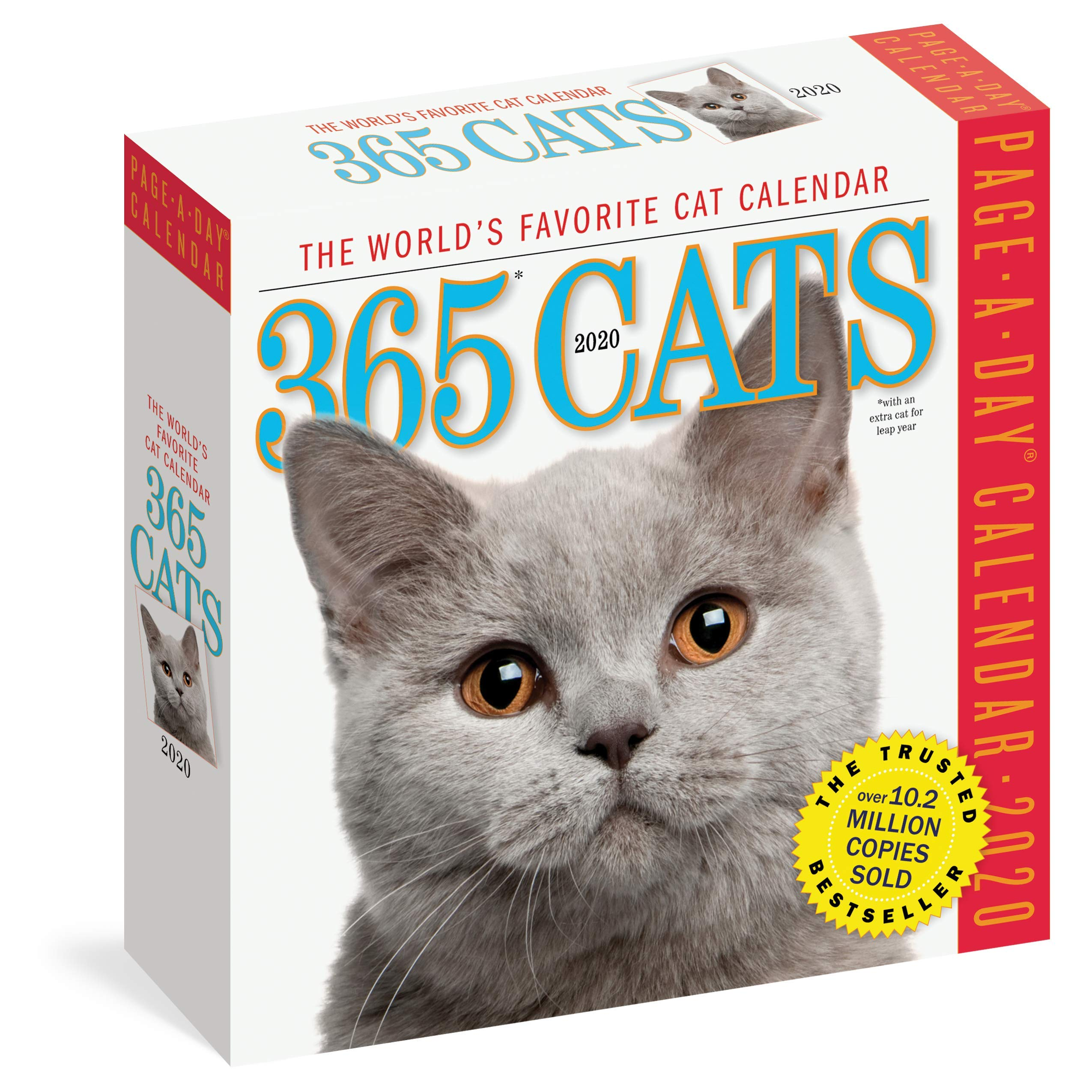 Cat Calendar 2020